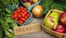 طرح تولید سالم هشت محصول کشاورزی وارد مرحله اجرایی شد