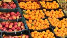 ۱۵۵ تن میوه ایام عید در آبادان تامین شد
