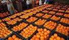 ذخیره سازی ۴۰ هزار تن میوه برای بازار شب عید