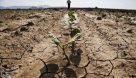 «معجزه آبخیزداری»|سوء مدیریت آب؛ عامل اصلی وقوع بلایا و مخاطرات طبیعی/ آبخیزداری راه علاج است