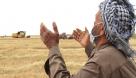 از خشکسالی تا آوای زندگی در گندمزارهای خوزستان/ برداشت خوشههای زرین از دل مزارع پربار